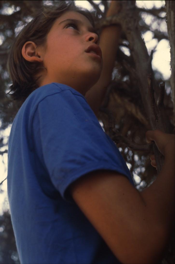 שקופית 24- 227 -ג'ש 1989-קב' ברוש-רוני הדר