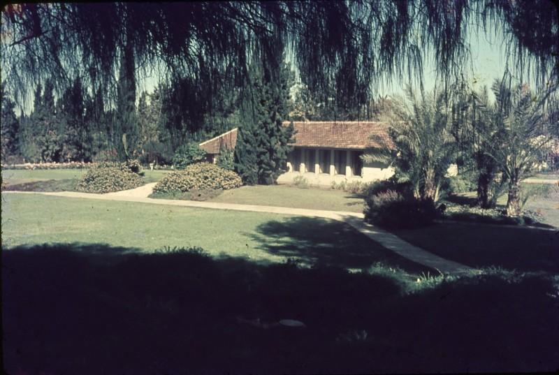 שקופית 26- 188 -ג'ש 1971-8-בית אורי הברוש הדקלים גן השושנים