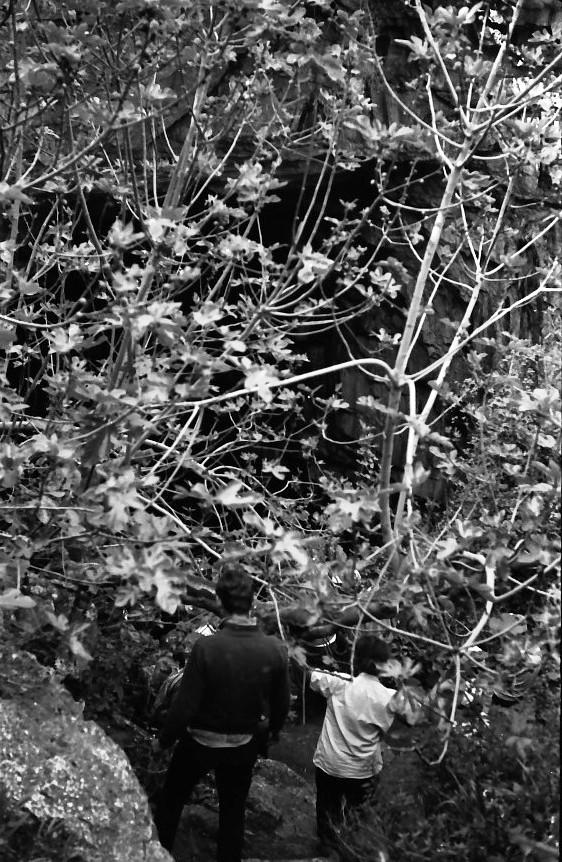 תמונה 2- 721 -ג'ש 1968-קב' שקמה-טיול לגליל