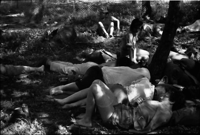 תמונה 3- 591 -ג'ש 1960-קב' גפן בטיול