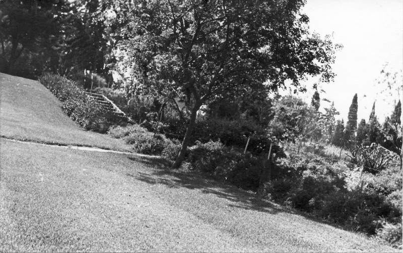 תמונה 3- 977 -ג'ש 1965-הדשא המרכזי במוסד
