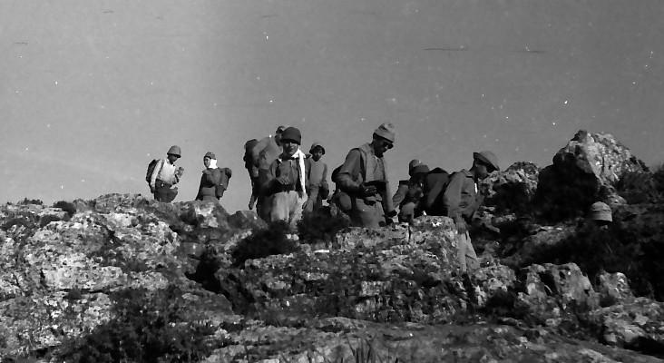 תמונה 5- 591 -ג'ש 1960-קב' גפן בטיול