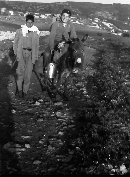 תמונה 7- 591 -ג'ש 1960-קב' גפן בטיול-מאיר שוורץ-שני