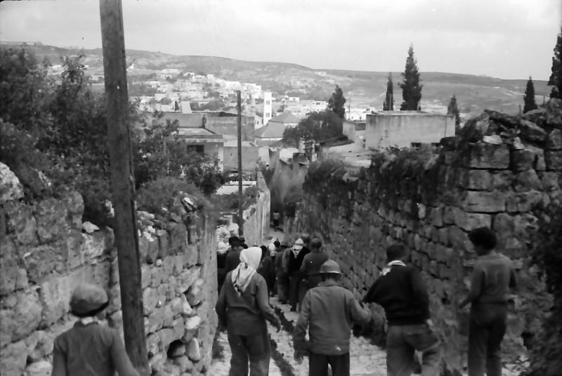 תמונה 16- 591 -ג'ש 1960-קב' גפן בטיול