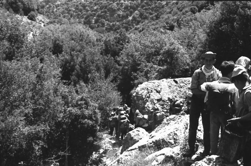 תמונה 7- 721 -ג'ש 1968-קב' שקמה-טיול לגליל