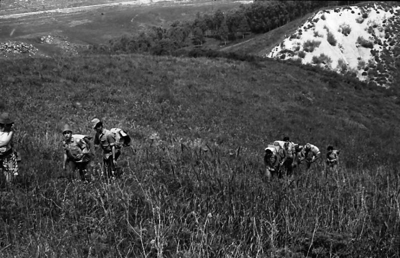 תמונה 11- 721 -ג'ש 1968-קב' שקמה-טיול לגליל