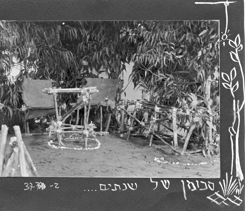 תמונה 2- 37 -ג'ש 1953-קבוצת נשר-במחנה צופי