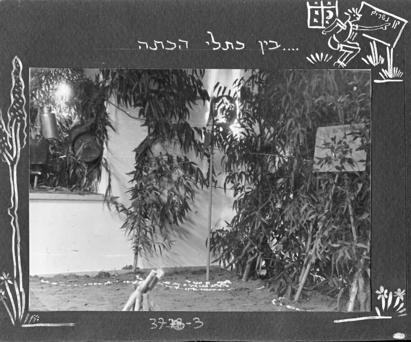 תמונה 3- 37 -ג'ש 1953-קבוצת נשר-במחנה צופי בכיתה