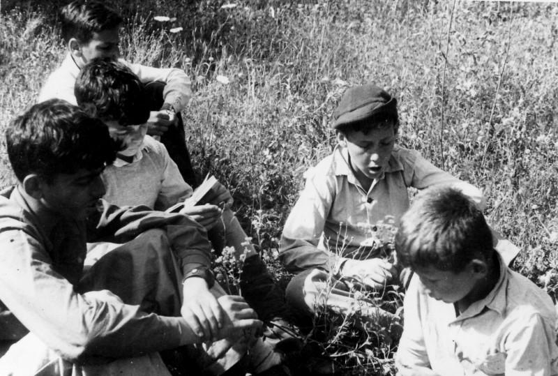 תמונה 7- 218 - קבוצת נשר מגדירים צמחים  - רן כהן מיכה זכאי גבי גרביה אילן לב - שנות ה-40-50