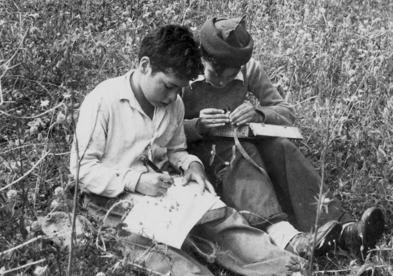 תמונה 9- 218 - ראובן שפירא ושמואל צרפתי - קבוצת נשר מגדירים צמחים - שנות ה-40-50
