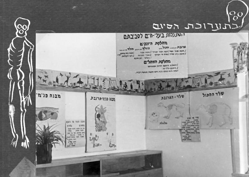 תמונה 14- 37 -ג'ש 1953-קבוצת נשר-תערוכת הסיום