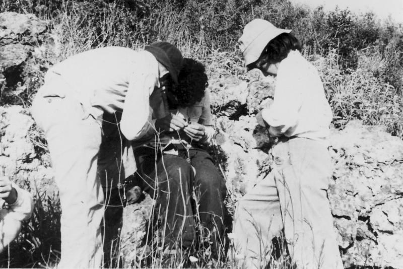 תמונה 14- 218 - קבוצת נשר מגדירים צמחים - רבקה דור - שנות ה-40-50