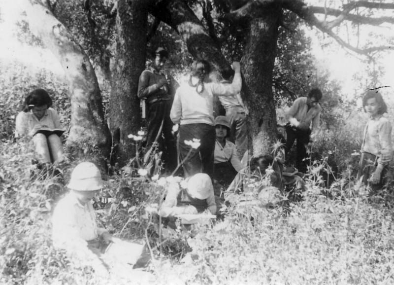תמונה 15- 218 - קבוצת נשר מגדירים צמחים - רינה פרנק דליה פלגי - שנות ה-40-50