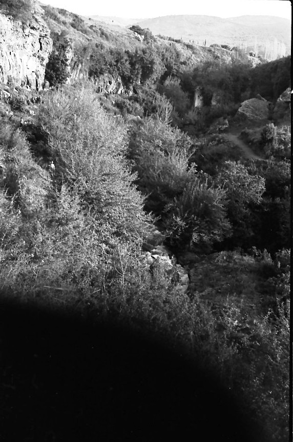 תמונה 24- 721 -ג'ש 1968-קב' שקמה-טיול לגליל