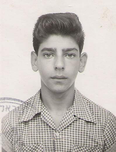 דב ברנשטיין (2)