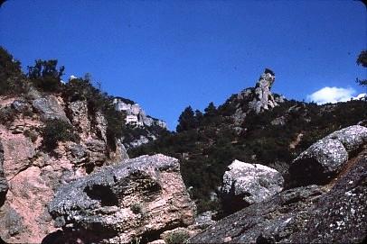 שקופית 9- 36 -קב' סהר-טיול ליון 1985
