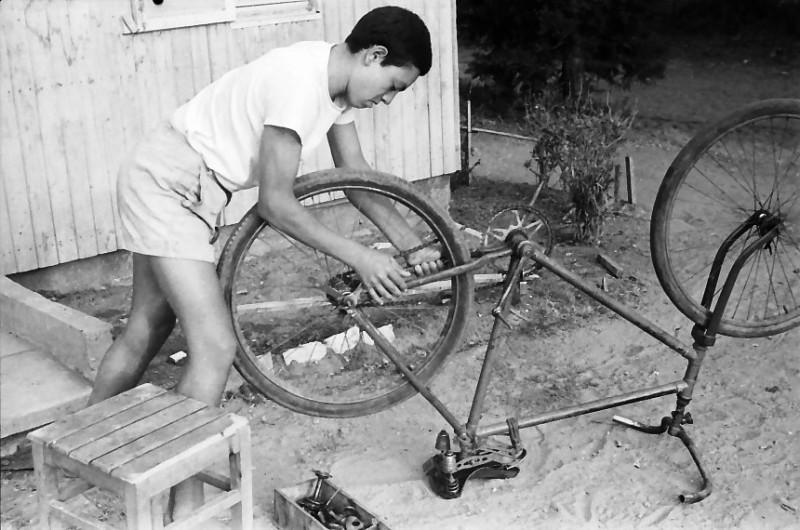 תמונה 4- 611 -ג'ש 1955-קב' ארז-תקון אפניים