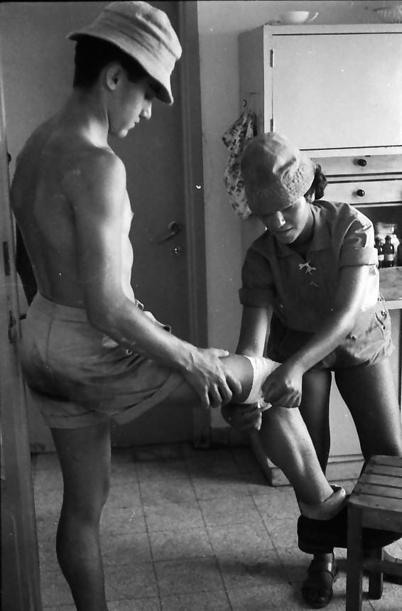 תמונה 7- 611 -ג'ש 1955-קב' ארז-חבישה