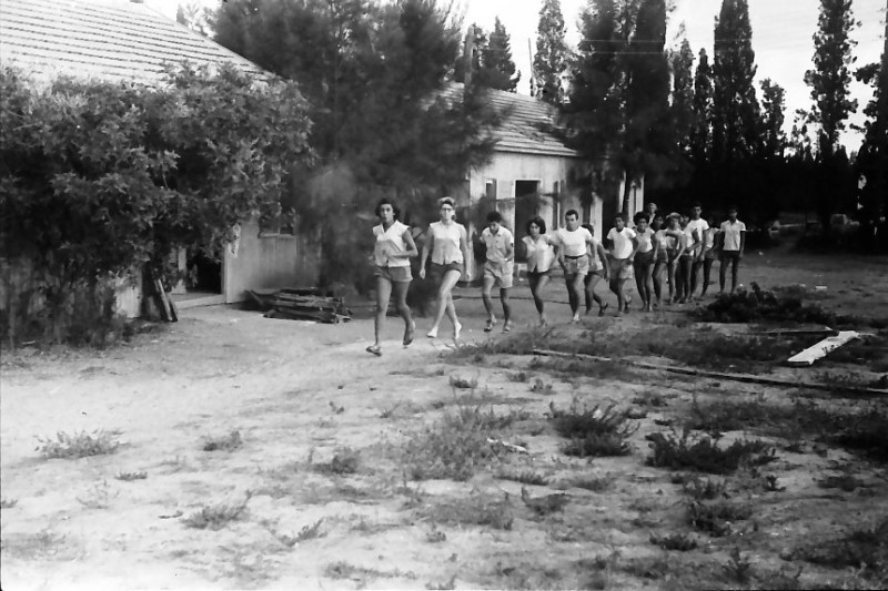 תמונה 9- 611 -ג'ש 1955-קב' ארז-ריצת בוקר