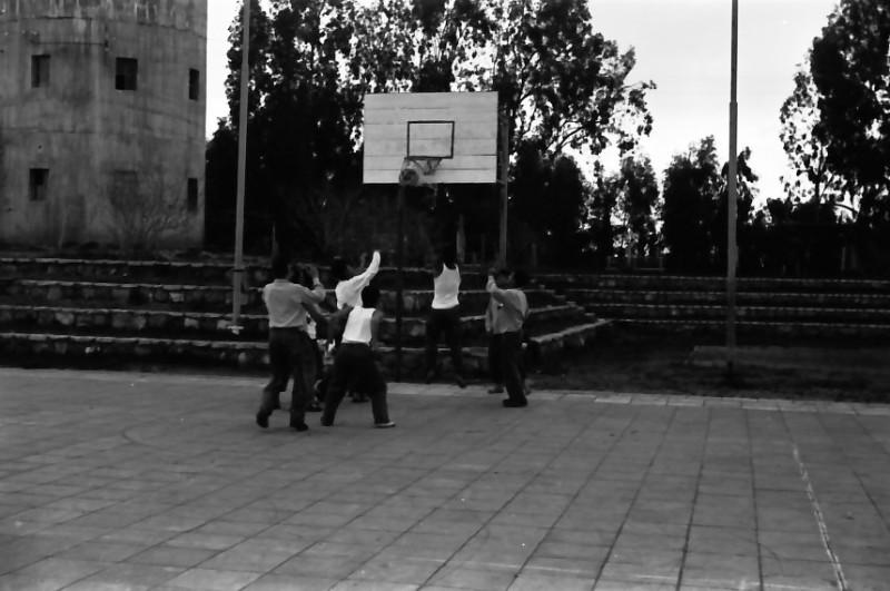 תמונה 9- 646 - ג'ש 1957-קב' ארז במגרש כדורסל