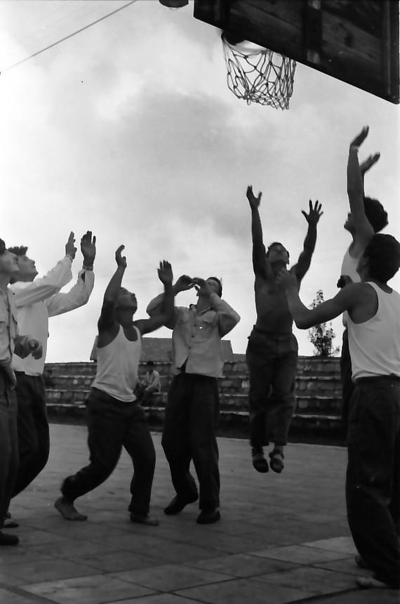 תמונה 10- 646 - ג'ש 1957-קב' ארז במגרש כדורסל