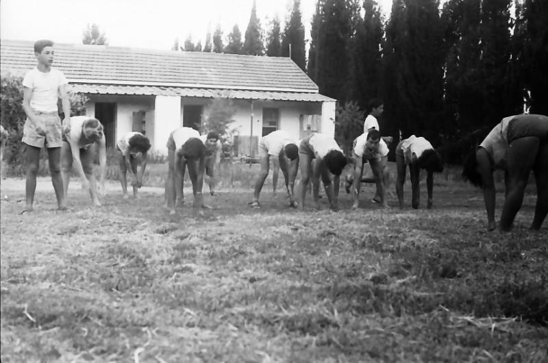 תמונה 11- 611 -ג'ש 1955-קב' ארז-התעמלות בוקר