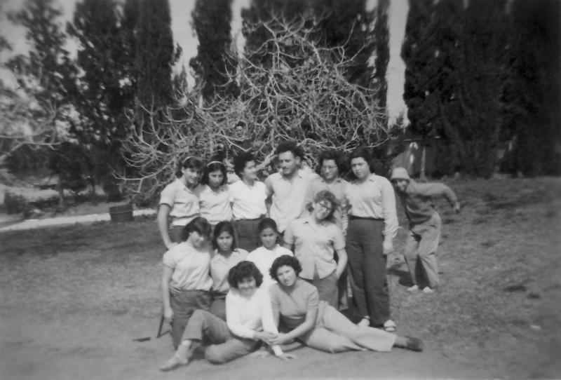 תמונה 12- 908 -ג'ש 1956-בנות קב' ארז ליד המעדון