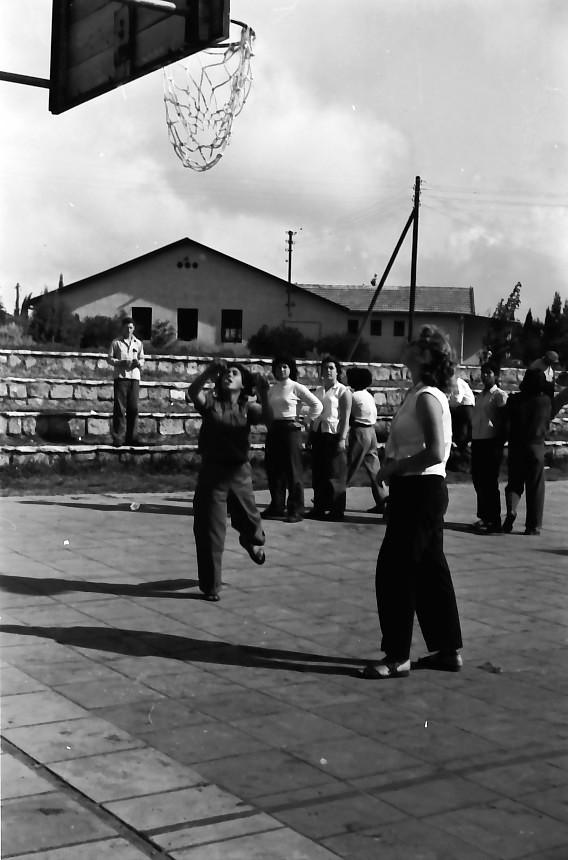 תמונה 13- 646 - ג'ש 1957-קב' ארז-לזיהוי