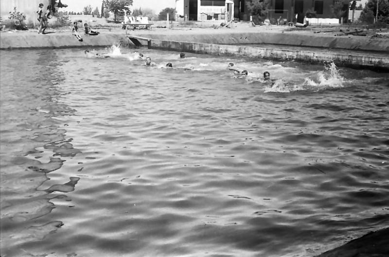 תמונה 24- 611 -ג'ש 1955-קב' ארז-בבריכת השחייה במוסד
