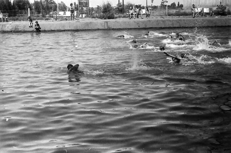 תמונה 25- 611 -ג'ש 1955-קב' ארז-בבריכת השחייה במוסד