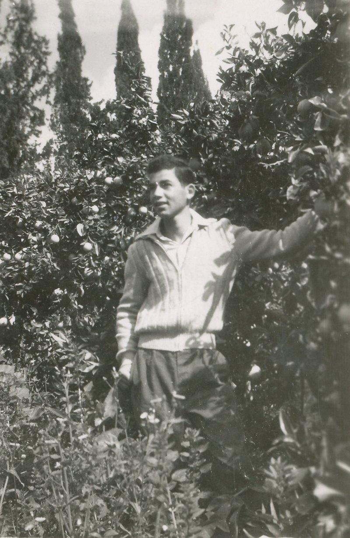 תמונה 26- 908 -ג'ש 1957-קב' ארז-יענקלה קסטל בפרדס