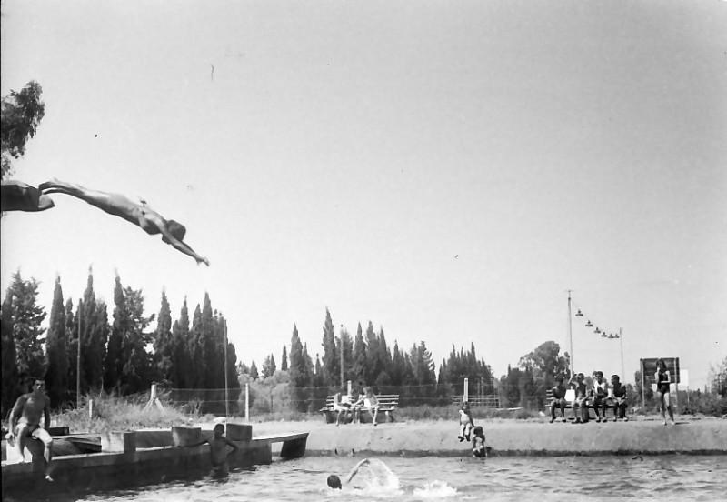 תמונה 30- 611 -ג'ש 1955-קב' ארז-בבריכת השחייה במוסד