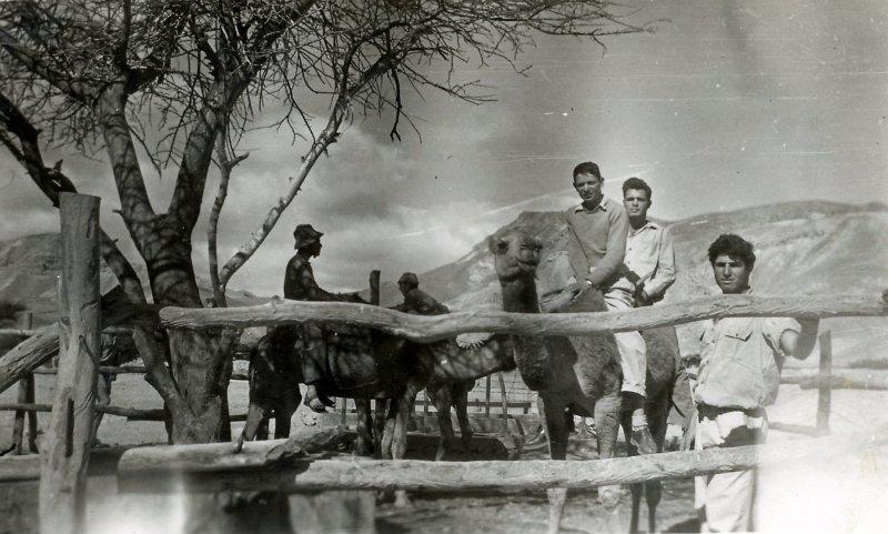 תמונה 47- 908 -ג'ש 1957-קב' ארז-פרטים בסכום