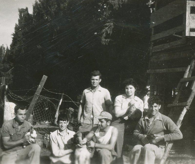 תמונה 51- 908 -ג'ש 1956-בני קב' ארז-שמות בסכום