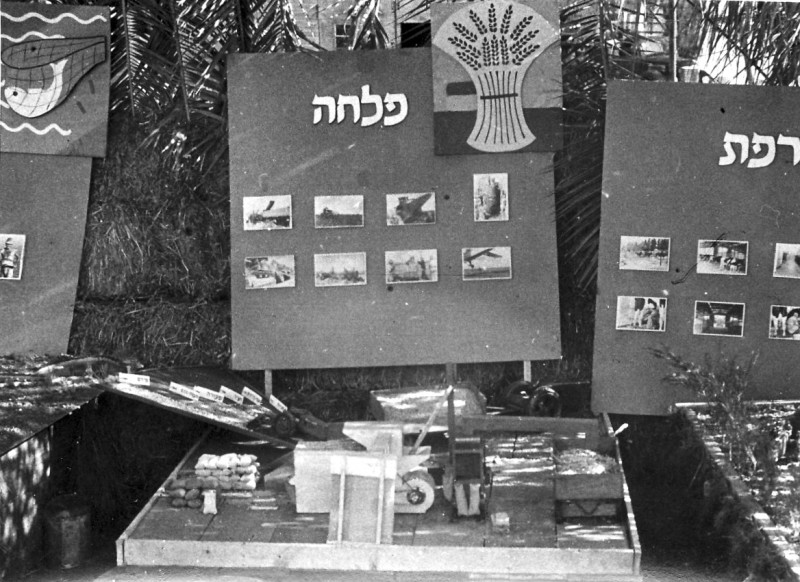 תמונה 8- 317 - תערוכת ענפים חג אסיף שנות ה-50 - הפלחה - המזרה בעבודתו - ביצוע קבוצת ניצנים