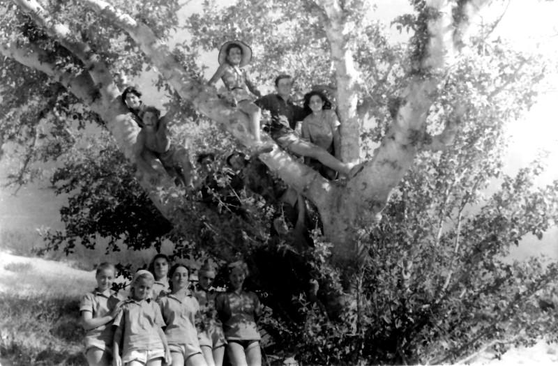 תמונה 10- 335 - קבוצת שלהבת בטיול - אילנה אלכס - שנות ה-50