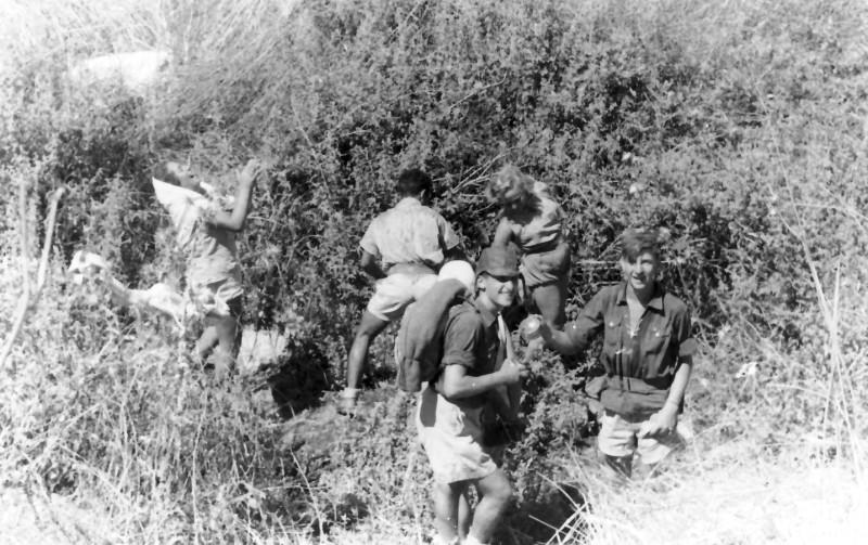 תמונה 12- 336 - קבוצת שלהבת בטיול לצפון שנות ה-50