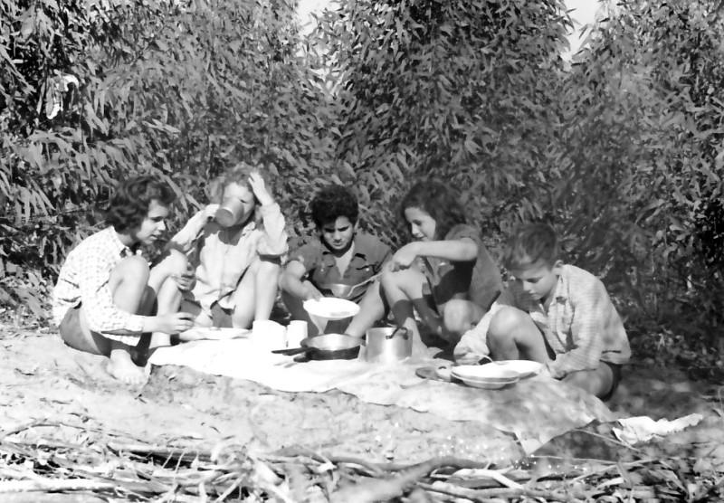 תמונה 3- 346 - ארוחה בל'ג בעומר - יגאל גלילי ענת יבנין גבי ניר לאה קראוס