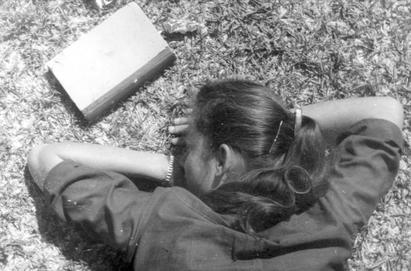 תמונה 13- 966 -ג'ש 1965-6-קב' רקפת-בדשא-לזיהוי