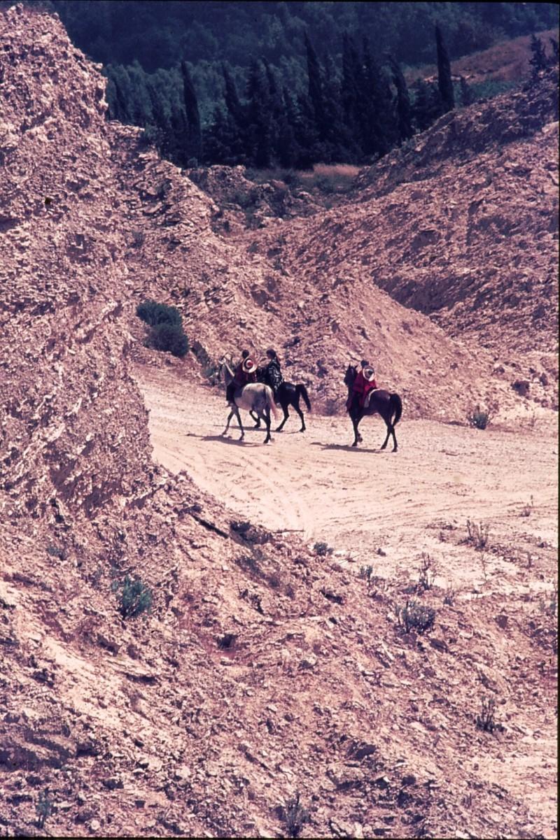 שקופית 45- 172 -ג'ש 1974-6-ילדי קב' סלע על סוסים במחצבה בדמיירה