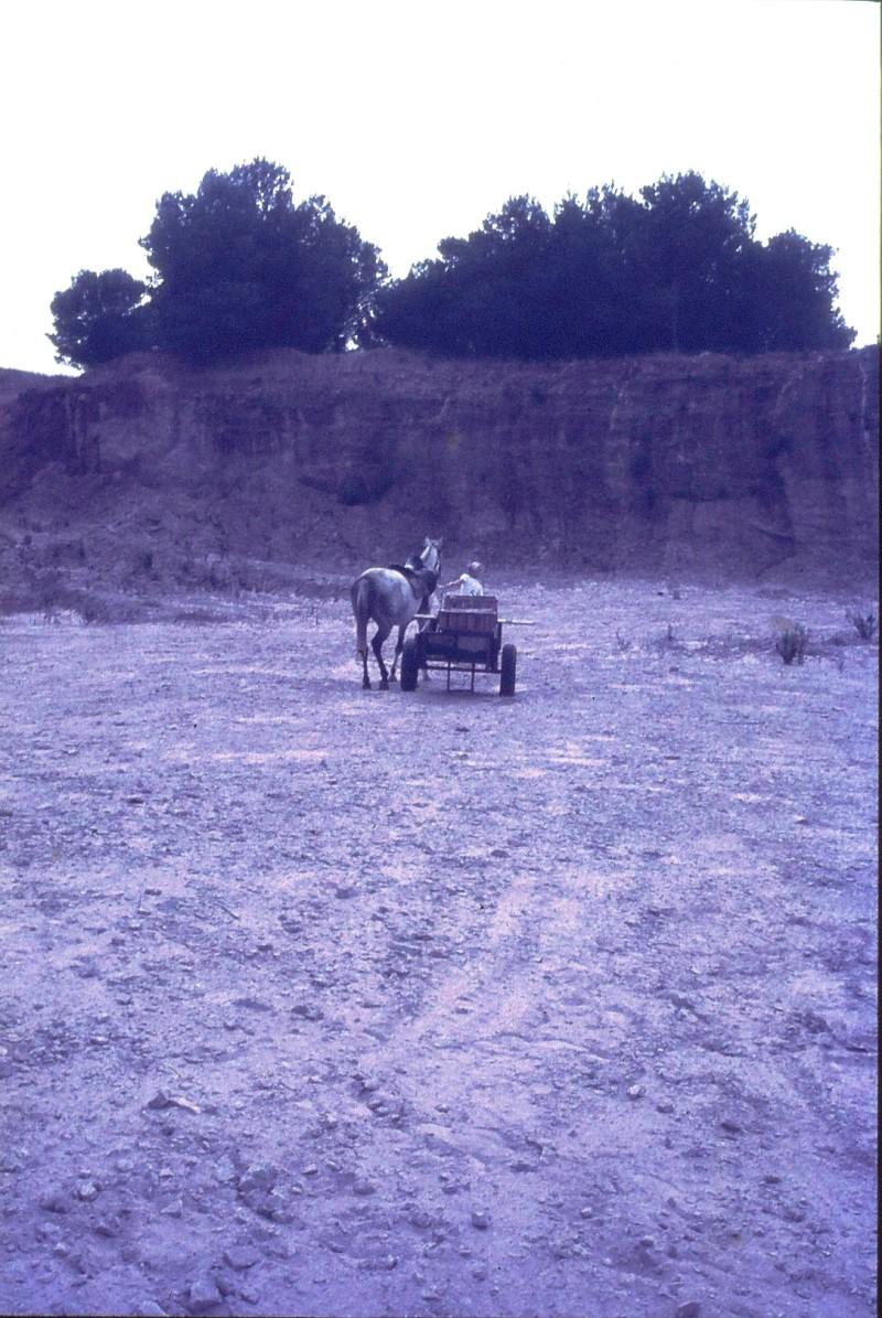 שקופית 46- 172 -ג'ש 1974-6-ילד מקב' סלע וסוס העגלה במחצבה בדמיירה