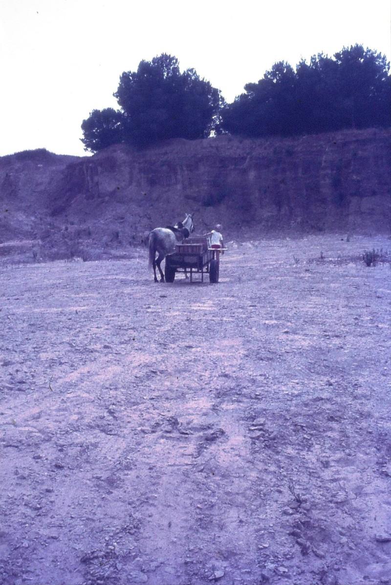 שקופית 47- 172 -ג'ש 1974-6-ילד מקב' סלע וסוס העגלה במחצבה בדמיירה