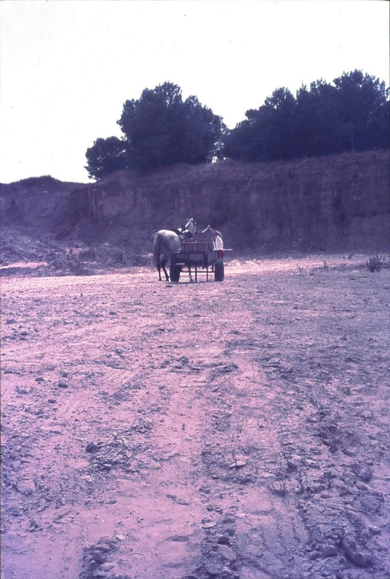 שקופית 48- 172 -ג'ש 1974-6-ילד מקב' סלע וסוס העגלה במחצבה בדמיירה