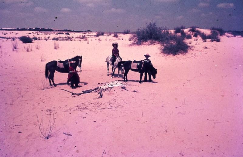 שקופית 29- 172 -ג'ש 1974-6-ילדי קב' סלע על סוסים בחולות