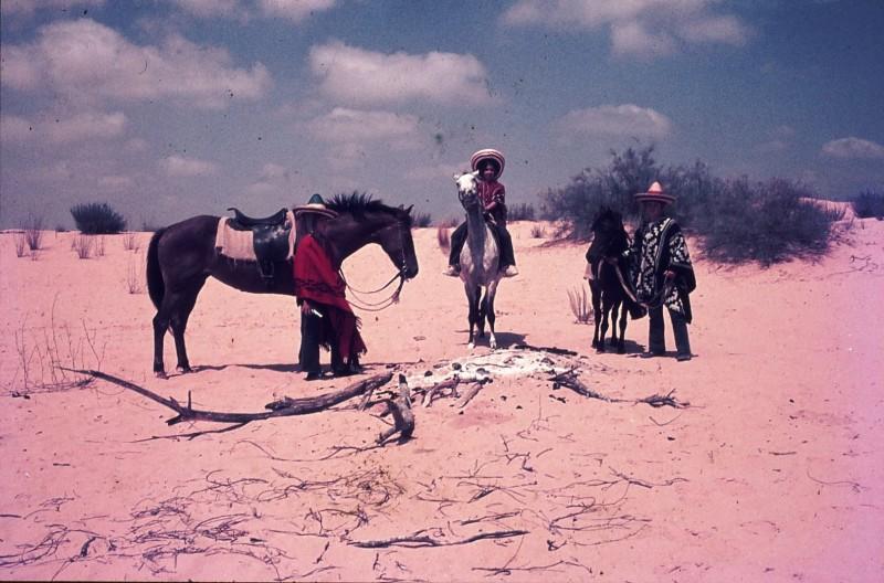 שקופית 30- 172 -ג'ש 1974-6-ילדי קב' סלע על סוסים בחולות