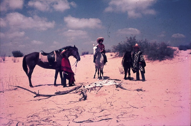 שקופית 32- 172 -ג'ש 1974-6-אריאלה-ראלי מרגלית יעקב ברק ולזיהוי על סוסים בחולות