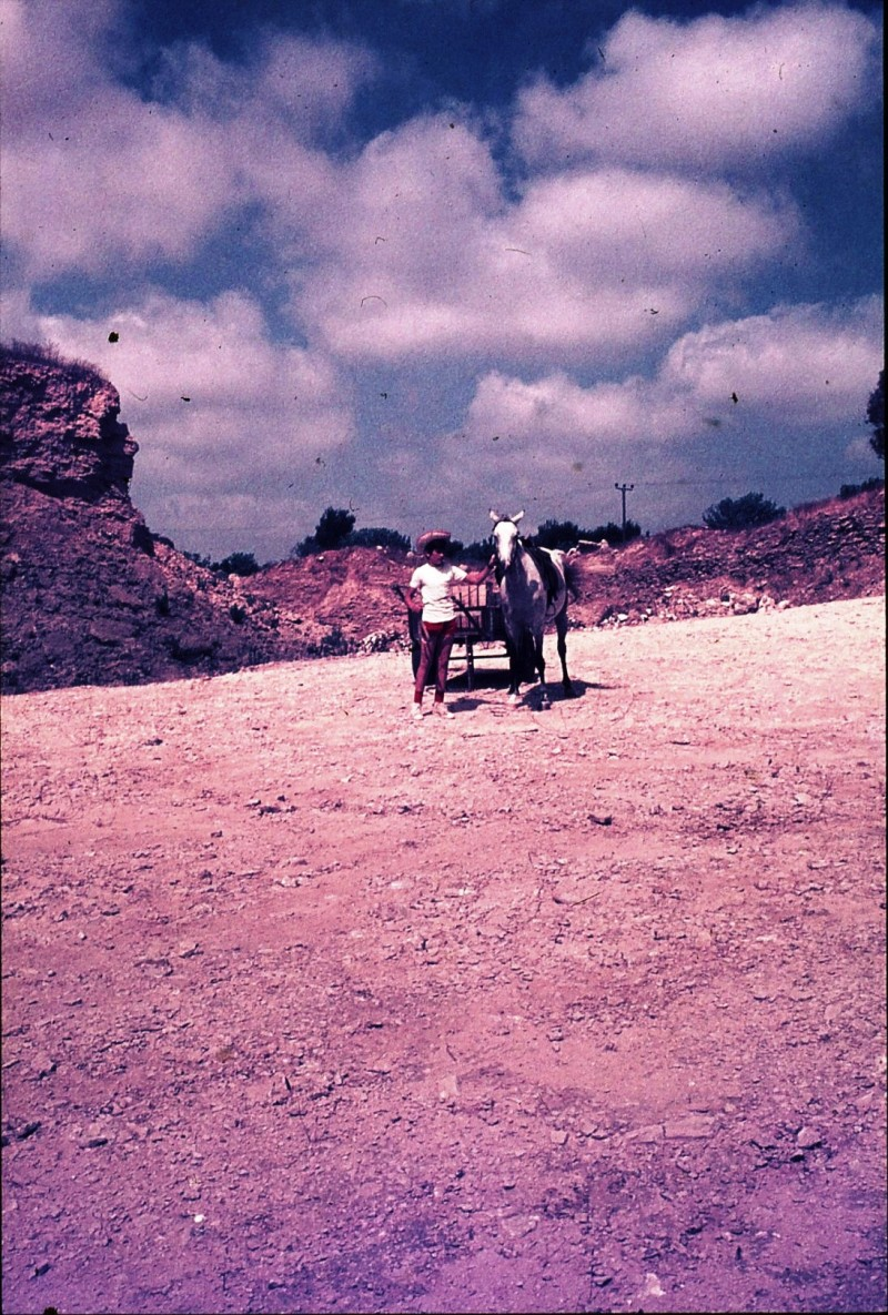שקופית 37- 172 -ג'ש 1974-6-ילד מקב' סלע וסוס העגלה במחצבה בדמיירה