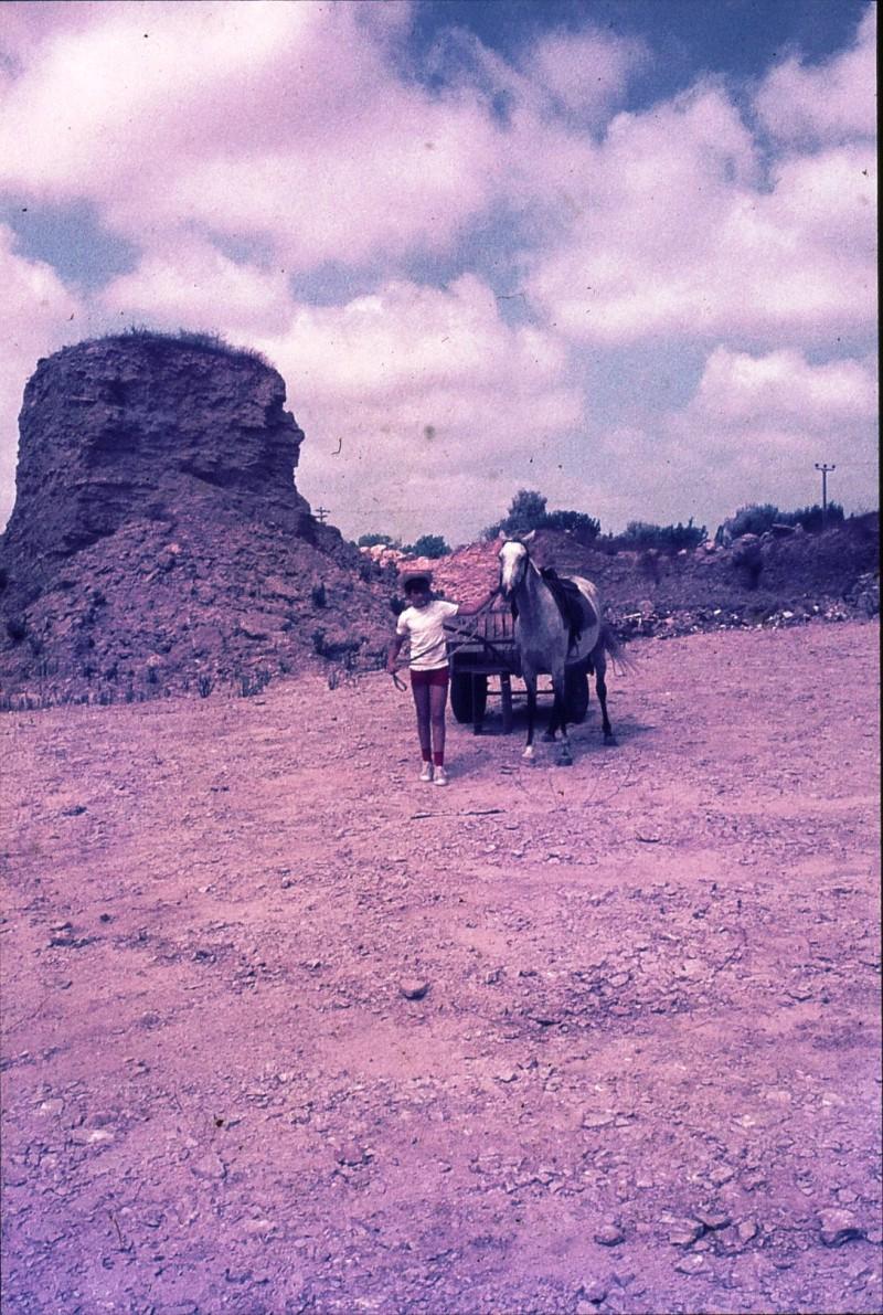 שקופית 38- 172 -ג'ש 1974-6-ילד מקב' סלע וסוס העגלה במחצבה בדמיירה