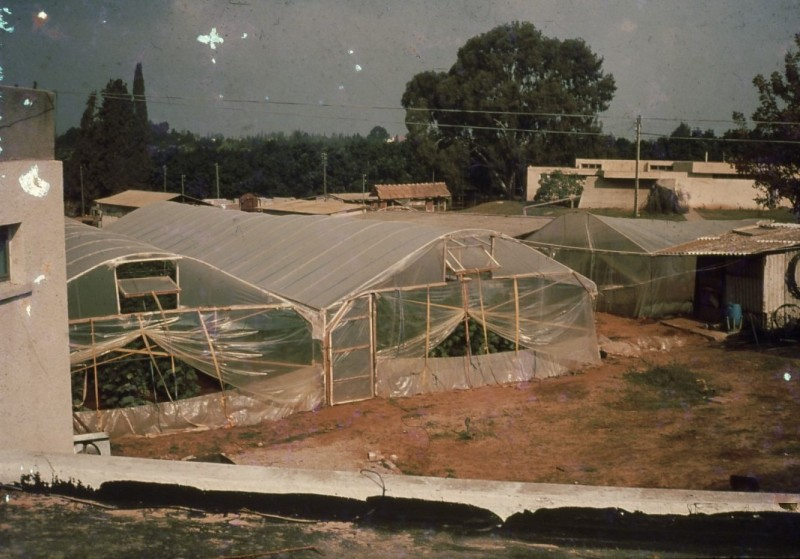 שקופית 14- 241 -ג'ש 1982-3-החממה במוסד