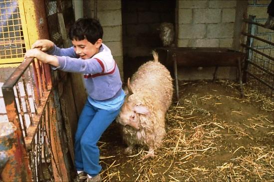 שקופית 26- 49 -גן-שמואל-ירון שוסטר במשק ילדים קב' כוכב 1990